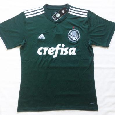 Camisa Palmeiras 2018 2019 verde foto real