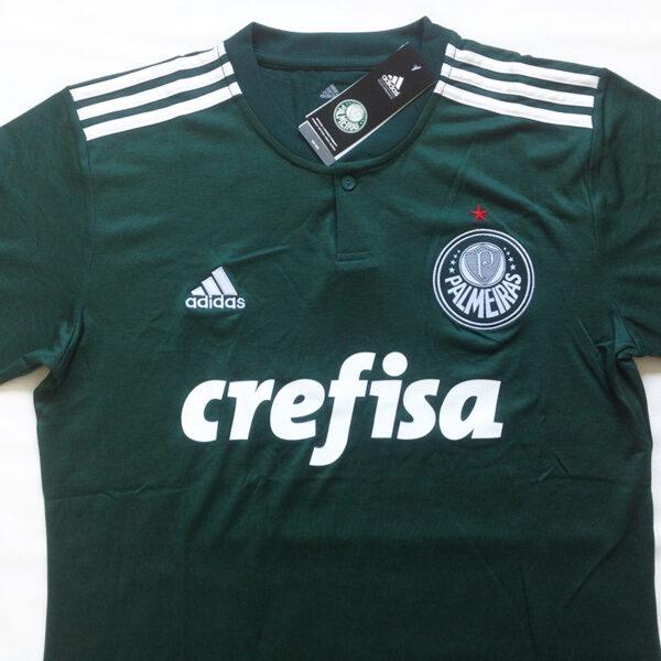 Camisa Palmeiras 2018 2019 foto real frente