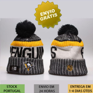 Gorro Pittsburgh Penguins nhl